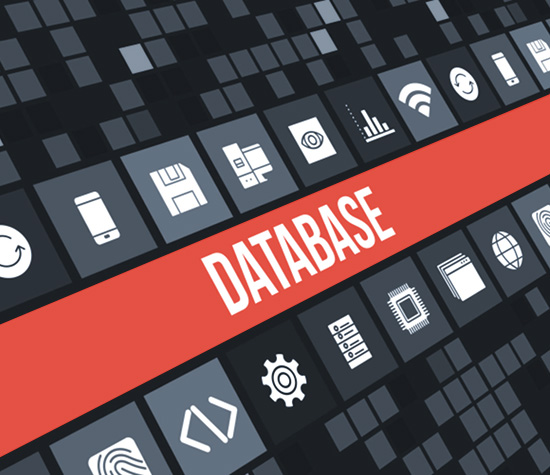 Advanced Web Scraping and Database Generation
