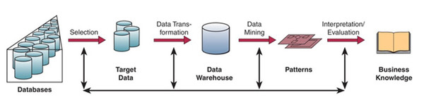 Custom data mining for businesses